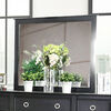 Arabelle Transitional Style Black Finish Mirror
